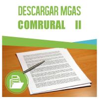 MGAS II